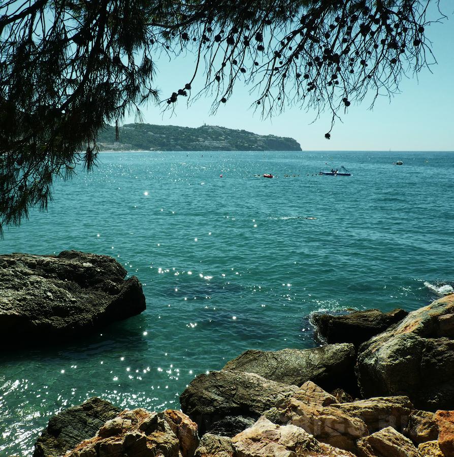 Купить путевку на канарские острова цены в москве